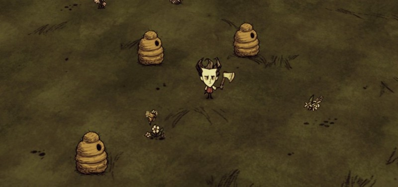 Don't Starve Forest